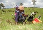 Una madre lleva a su niño a la espalda mientras planta semillas de árboles durante un ejercicio de reforestación comunitaria en Kenia.
